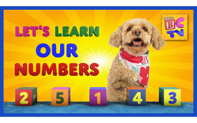Learn Numbers 1-10 with Lizzy the Dog