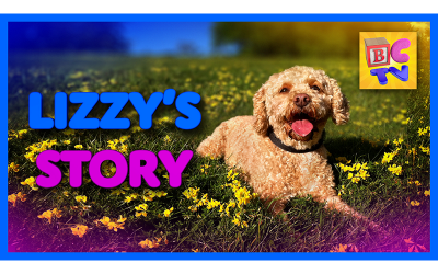 Lizzy's Story | Kids Video of Cute Puppy and Funny Dog