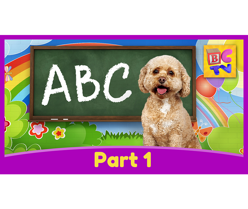 Learn the Alphabet with Lizzy | Part 1